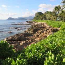 a5e50beb Photo of Fun Hawaii Travel - Honolulu, HI, United States. Paradise Cove!