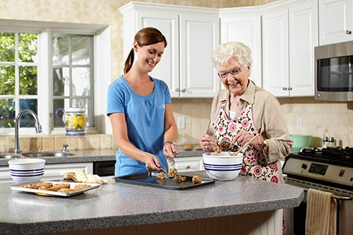 Comfort Keepers Home Care: 837 Maple Ave, Holland, MI