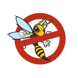 Stansted Stortford Pest Control Pest Control The