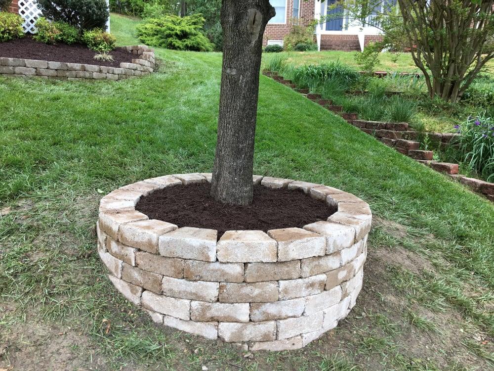 Tree Ring Planter Ideas