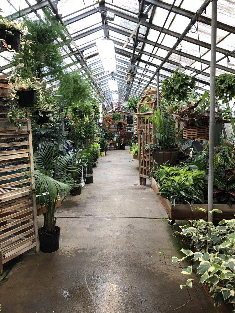 Photo of Mostardi Nursery: Newtown Square, PA