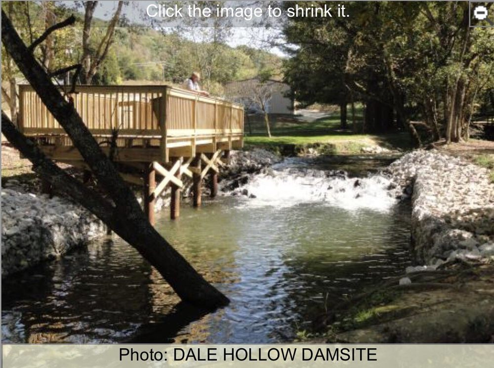 Dale Hollow Dam Campground: 200 Campground Rd, Celina, TN