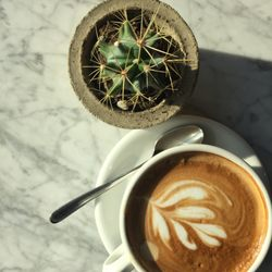 ethical coffee company sverige