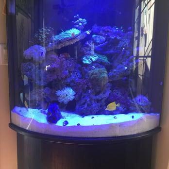 Lax Aquarium 133 Photos 61 Reviews Pet Stores 5310