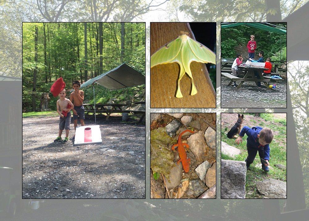 Malouf's Mountain Sunset Campground: Beacon, NY