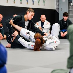 Dominion BJJ - 44 Photos - Brazilian Jiu-jitsu - 8068