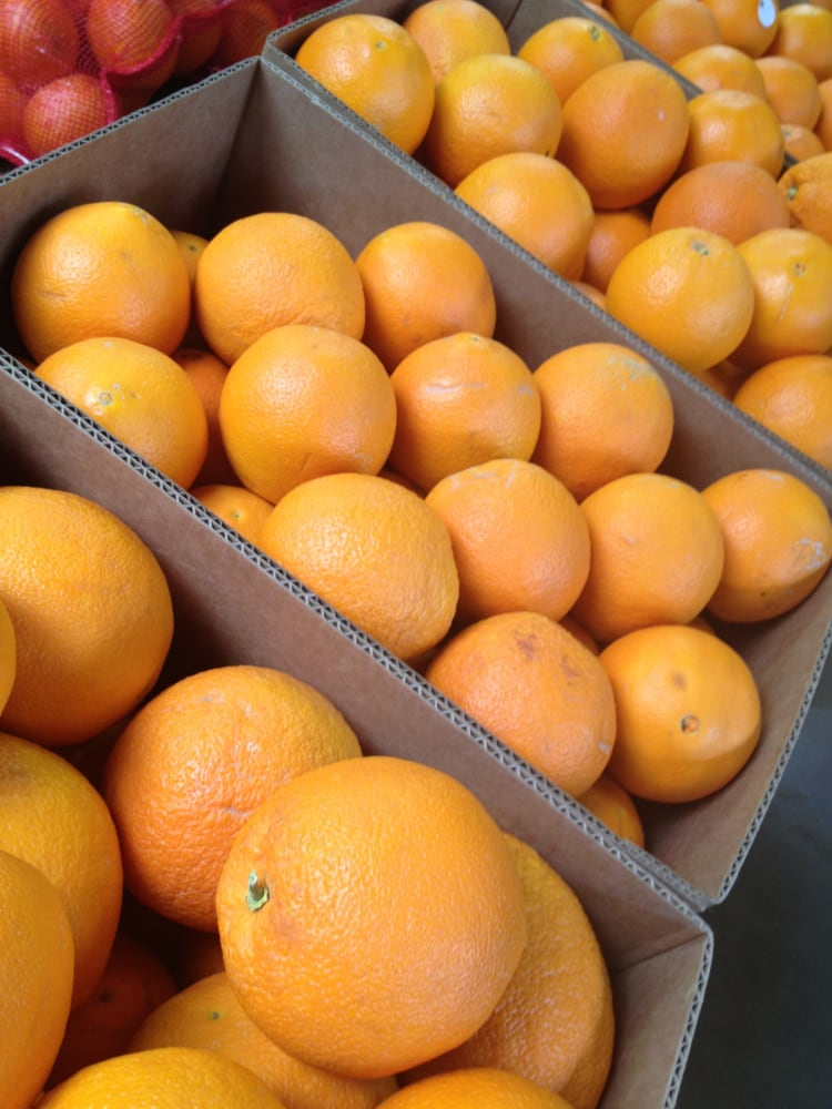 Citrus Heights Farms