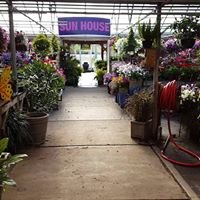 The Plant Outlet Nursery and Garden Center: 827 Hogan Ln, Conway, AR