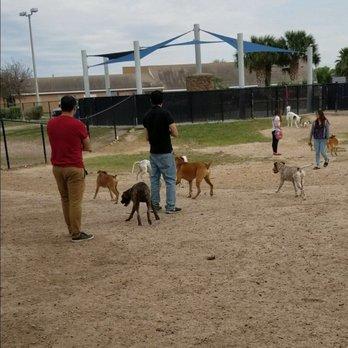 Dog Parks In Mcallent Tx