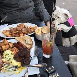 Top 10 Best Dog Friendly Restaurants in New York, NY - Last