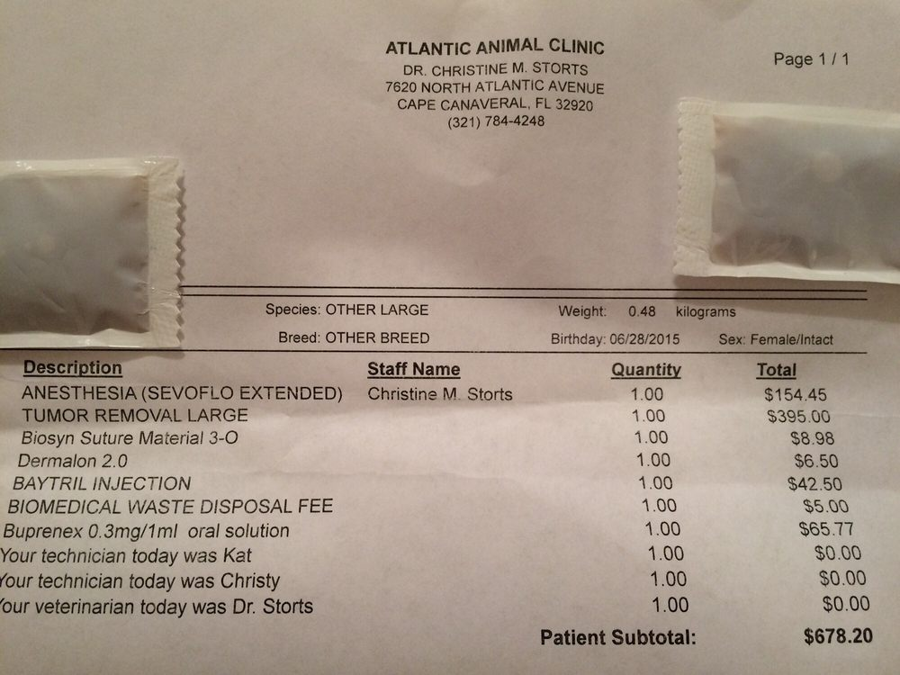Rat Tumor Removal Cost Outrageous Insulting Go Elsewhere For