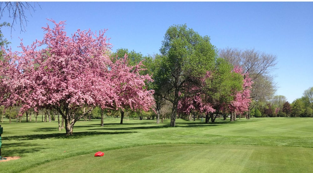 Social Spots from Watertown Country Club