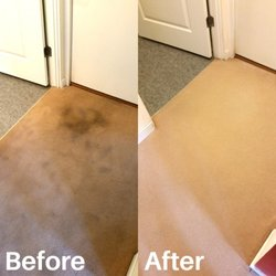 Bluegrass Cleaning Company 13 Photos Carpet Cleaning 3323 Wood