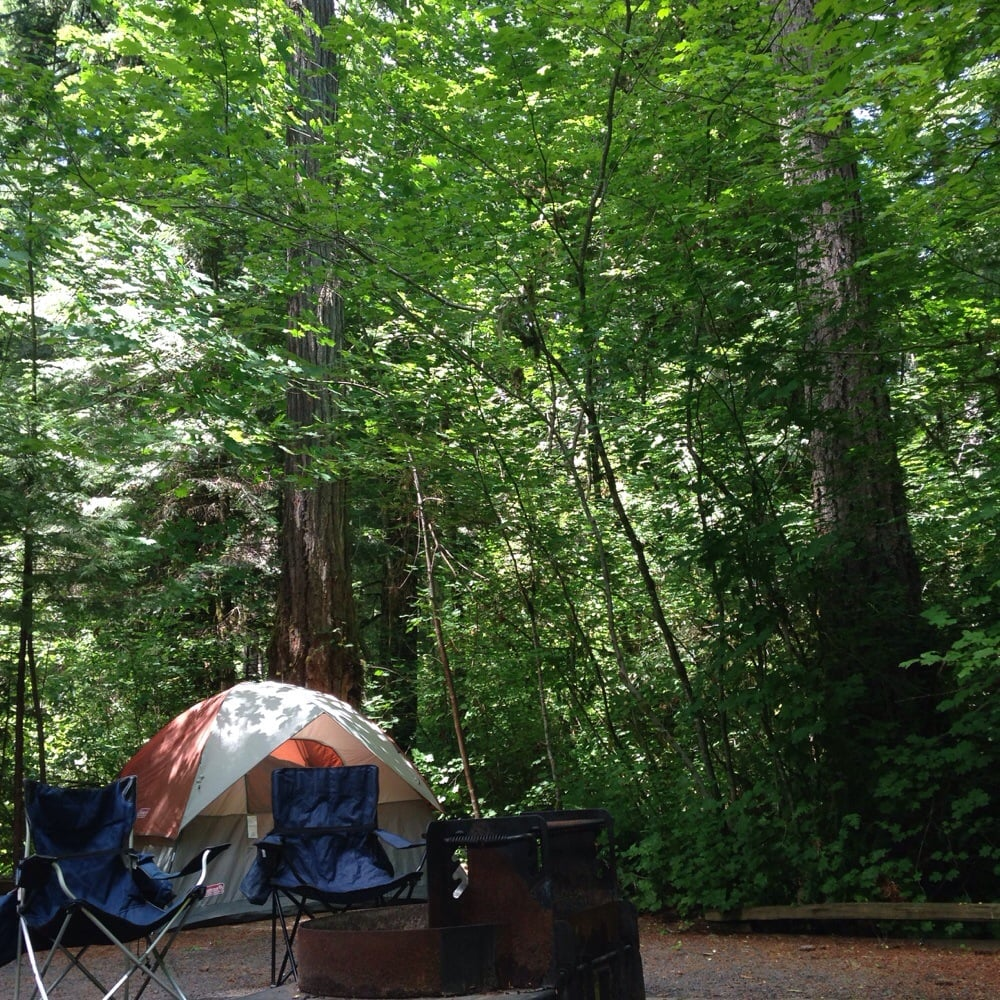 Susan creek campground fishing highway 138 roseburg for Where can i go fishing near me