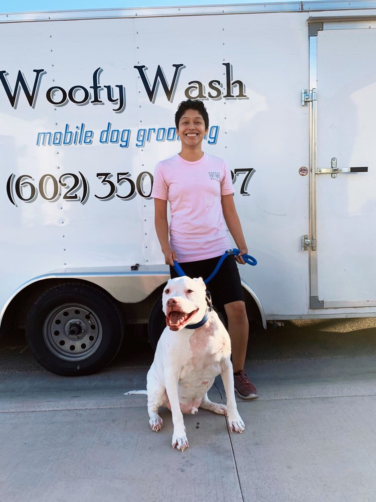 Woofy Wash Mobile Dog Grooming: Avondale, AZ