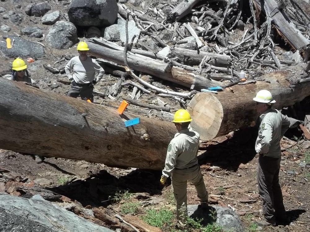 High Sierra Volunteer Trail Crew