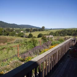 Photo Of Roundstone Farm Olema Ca United States Beautiful View From The