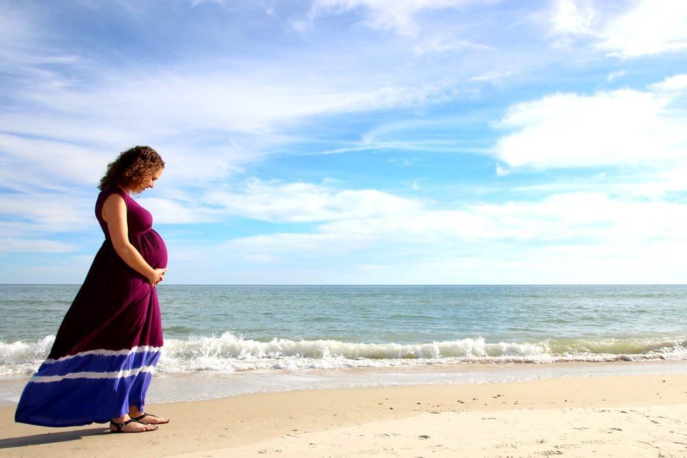 Sandhill Photography: Bradenton, FL