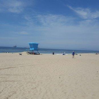 Dog Friendly Beaches Pacific Grove Ca
