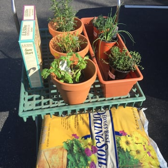 Photo Of Armstrong Garden Centers   La Habra, CA, United States. $85 For