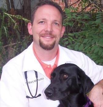 Our Team | Animal Hospital | Parker, Colorado