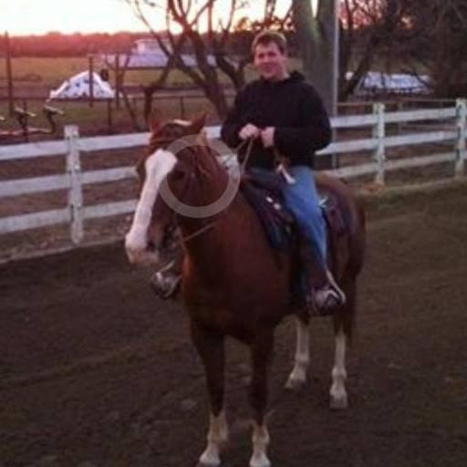 Horses For Lease Long Island Ny