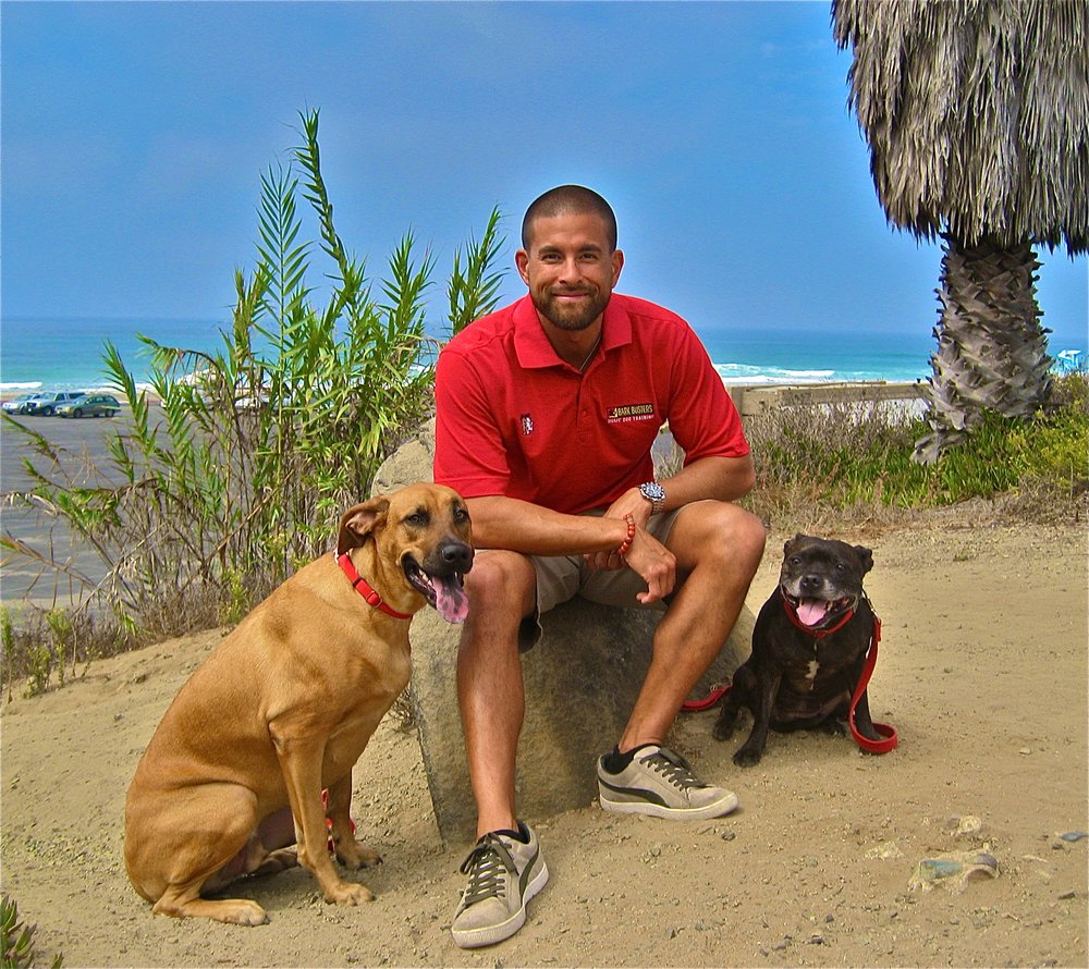 Yelp Reviews for Bark Busters Home Dog Training San Diego - 195