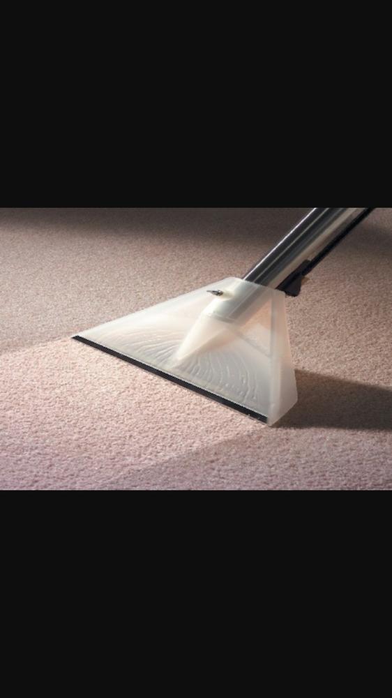 The Carpet Care 14 Photos Amp 21 Reviews Carpet Cleaning