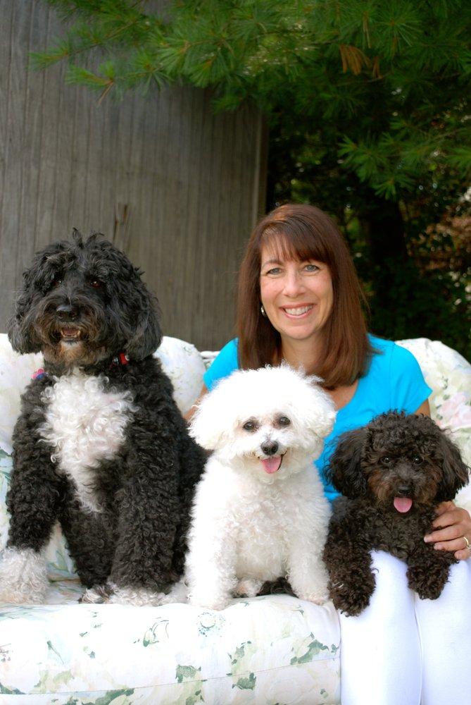 Dog Walking Service Burlington Ma
