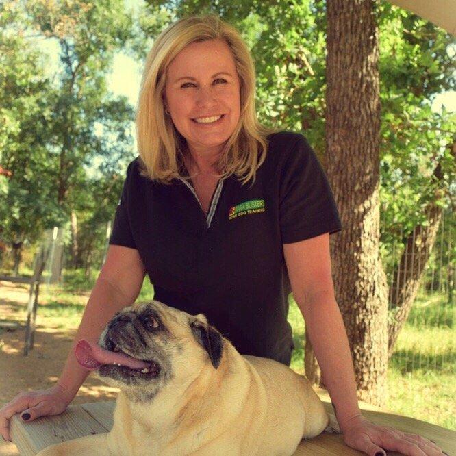 Bark Busters Home Dog Training Austin