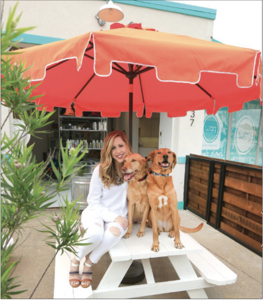 Wag Canine Emporium 79 Photos Amp 21 Reviews Pet Stores