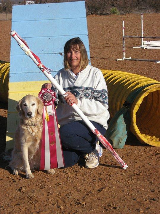 animal watchers more pet training 440 w hwy 82 huachuca city