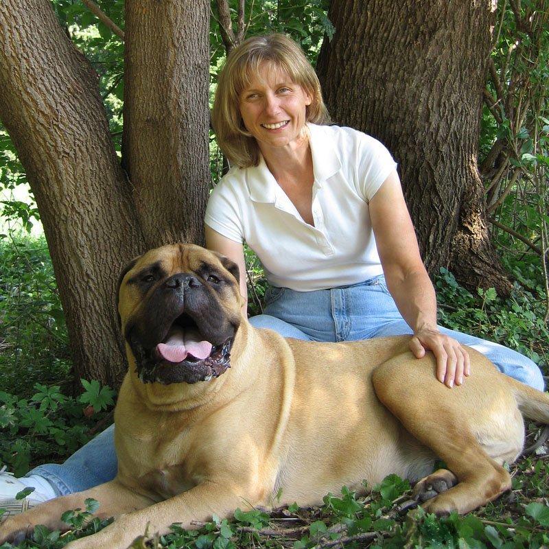 Dog Training Classes Lincoln Ne