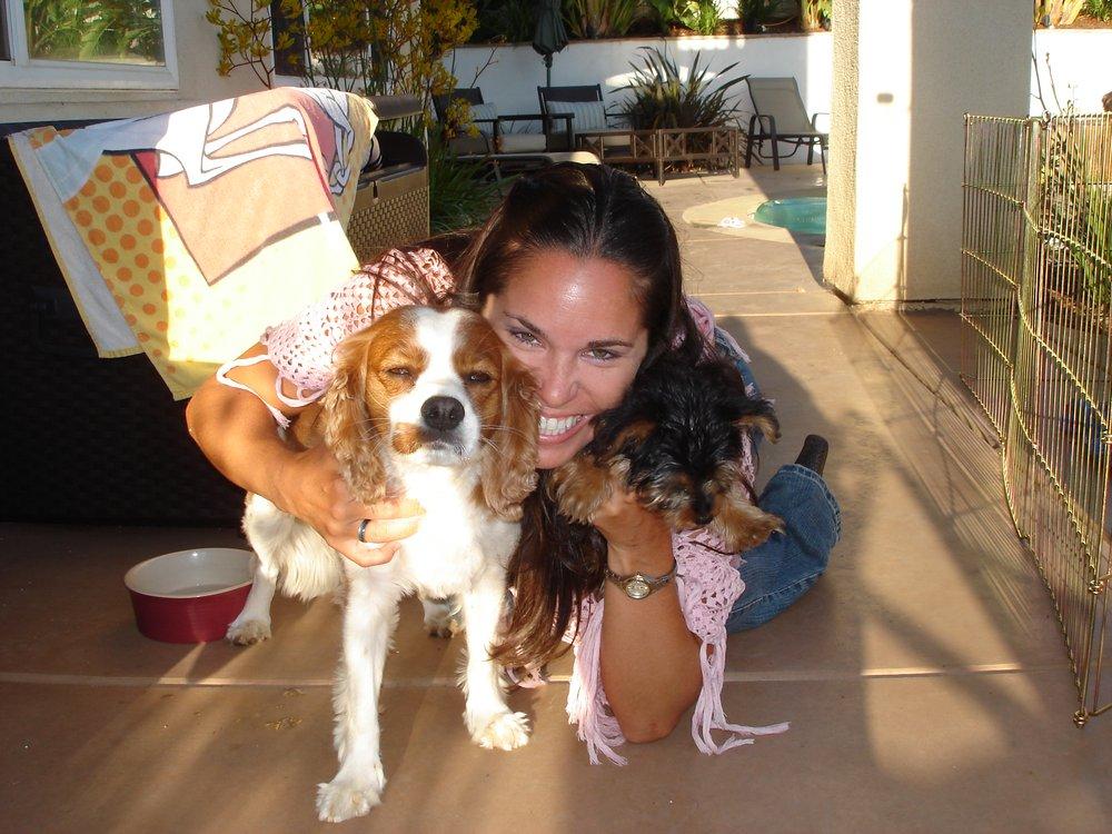 pet massage provider   13 photos   pet sitting   cruz bay