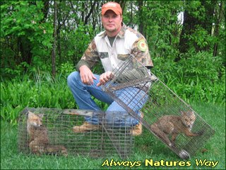 Always Nature S Way Wildlife Removal Round Lake Il