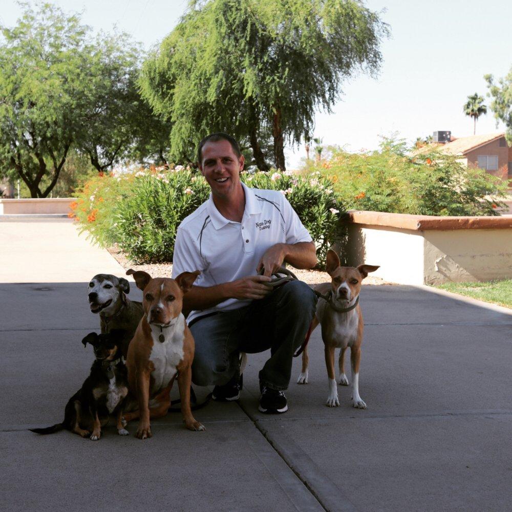 Nate Dog Training - Pet Training - Phoenix, AZ - Phone