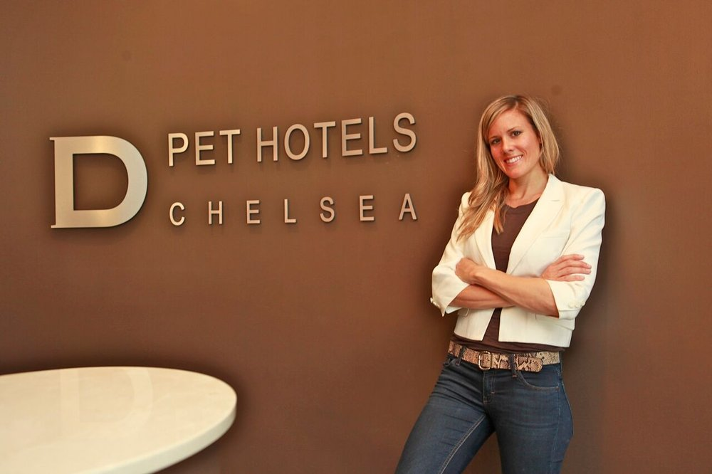 Comment From Kerry B Of D Pet Hotels Chelsea Business Owner