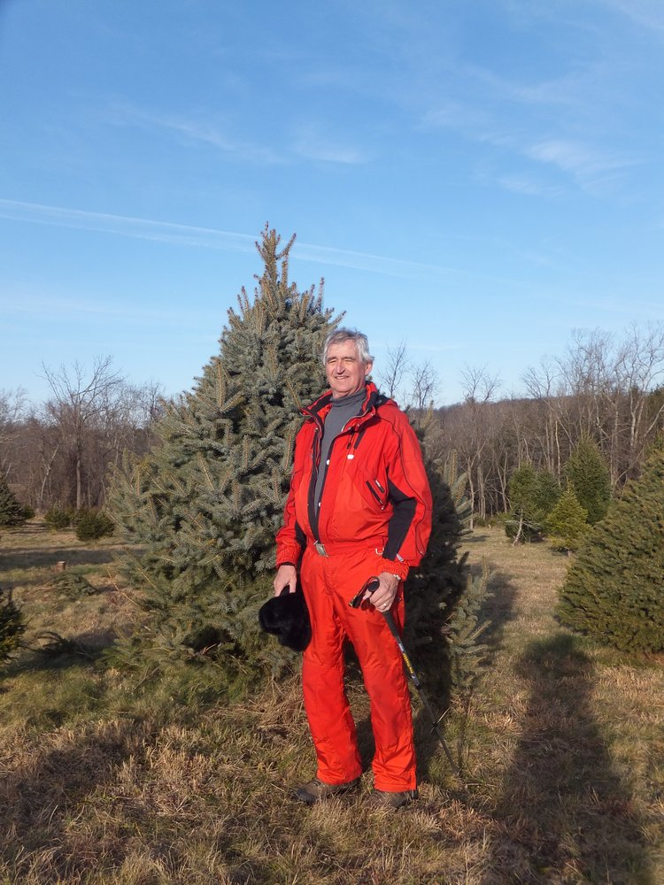comment from frans k of middleburg christmas tree farm business owner - Middleburg Christmas Tree Farm