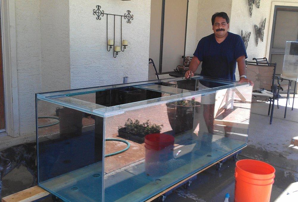 Deep blue aquariums local fish stores 580 n bullard for Fish stores in arizona