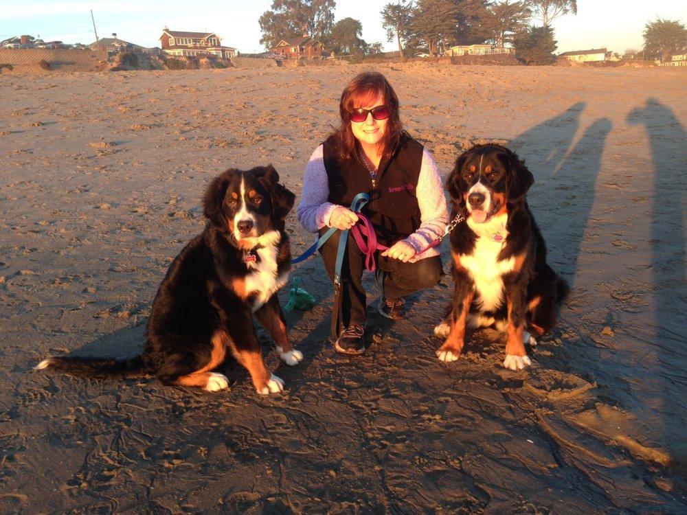 First Time Meeting Adopted Dog Cesar Millan