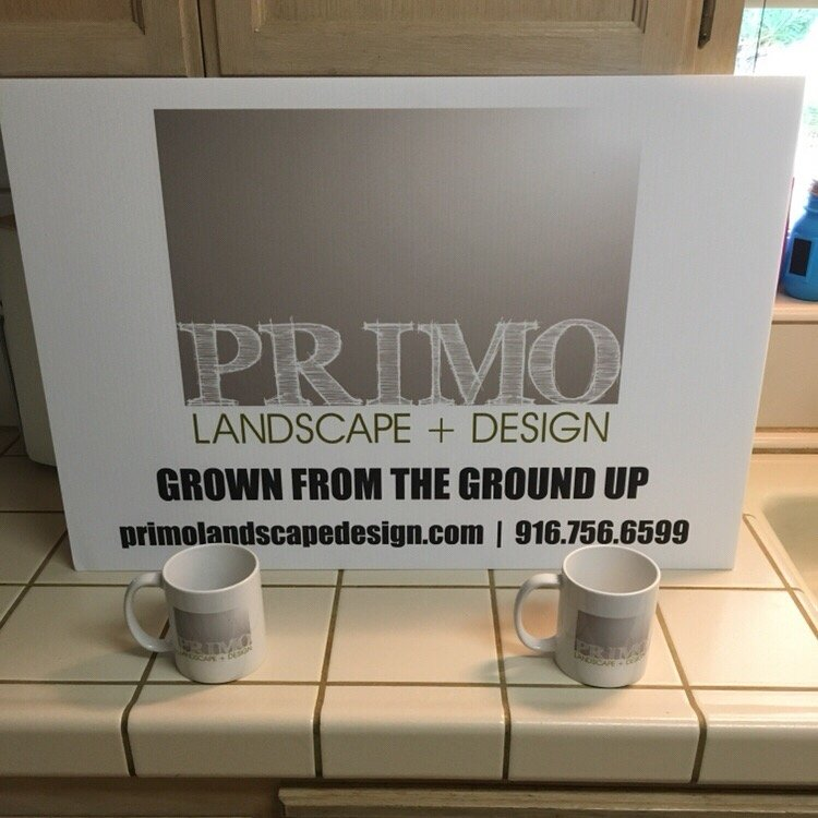 Primo Landscape Design Sacramento