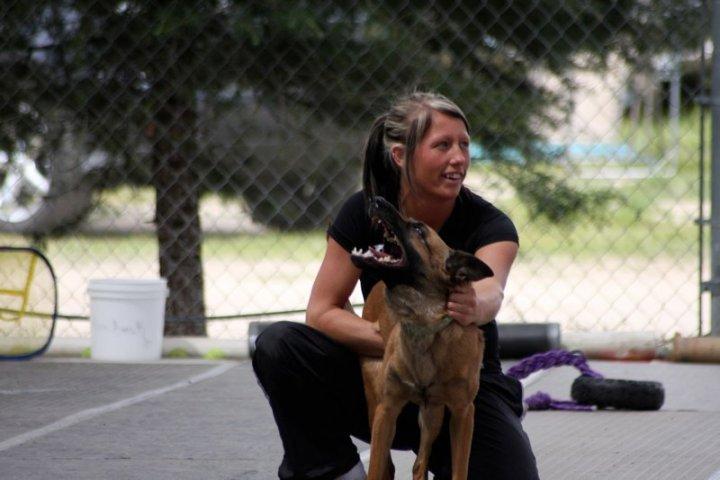 Dog Agility Training Royal Oak Mi