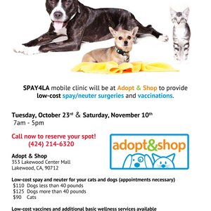 SPAY4LA Mobile Clinic - Low Cost Spay/Neuter Surgeries and