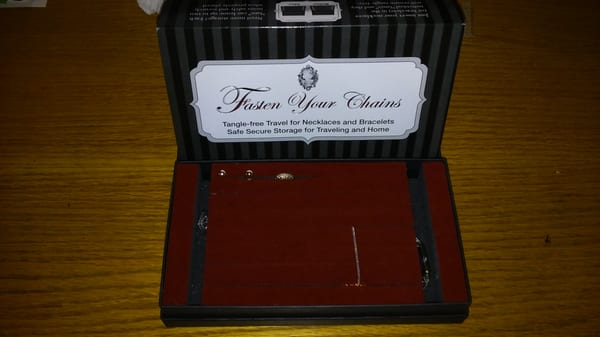 Fasten Your Chains Jewelry Case ..