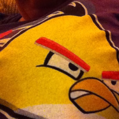 Angry Bird T.