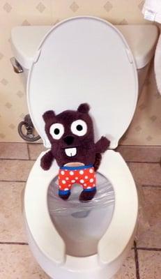Mr-BeaverBob O.