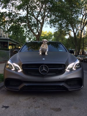 mercedes benz of rockville centre 110 w graham ave