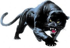 Panther U.