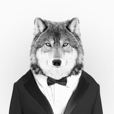 Wolf X.
