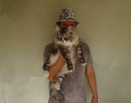 Grey S.